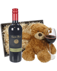 Argentinian Malbec Red Wine and Teddy Bear Gift Basket