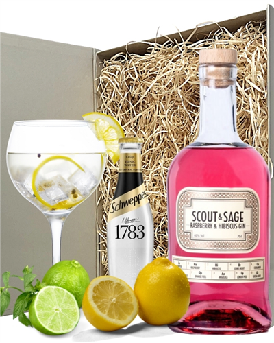 Scout And Sage Raspberry Gin And Tonic Gift Set