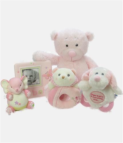 Baby Girl Small Gift Hamper