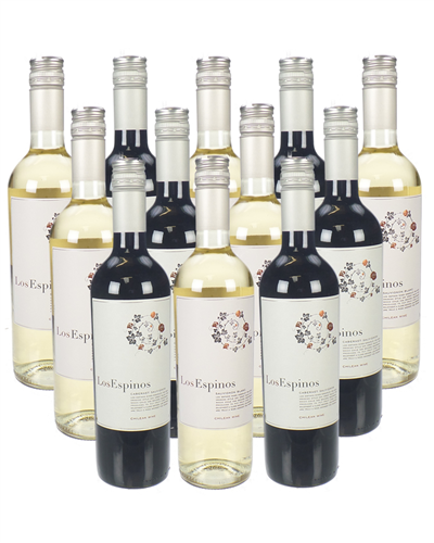 Chilean Mixed Wine Case