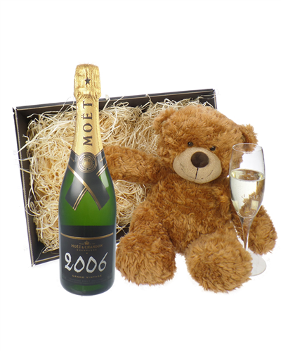Moet & Chandon Vintage Champagne and Teddy Bear Gift Basket