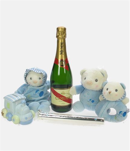 Mumms The Word Baby Boy Gift Basket