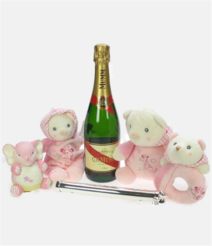 Mumms The Word Baby Girl Gift Basket